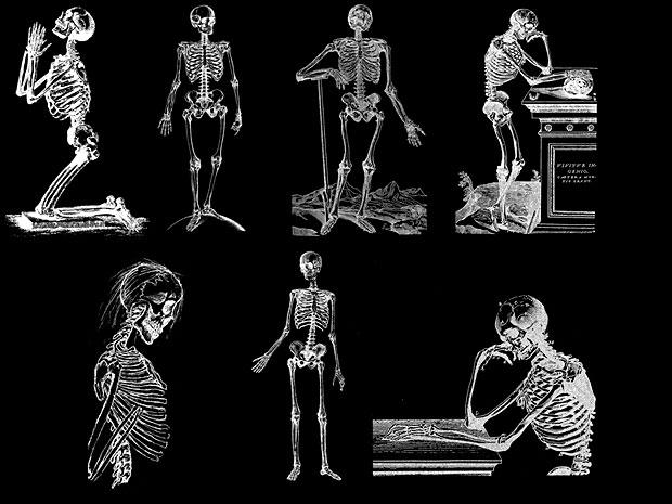 Skeletons 1